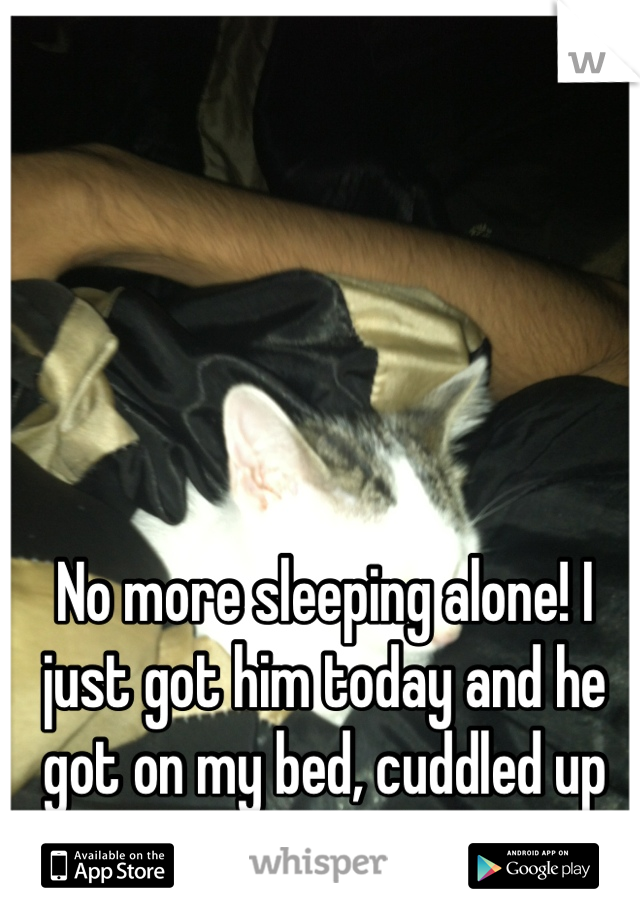 No more sleeping alone! I just got him today and he got on my bed, cuddled up on me, and fell asleep!
