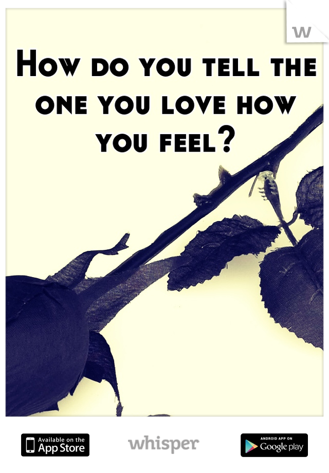 How do you tell the one you love how you feel?