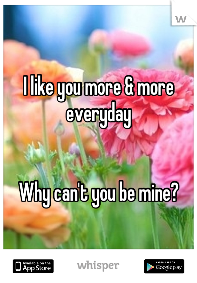 I like you more & more everyday    Why can't you be mine?