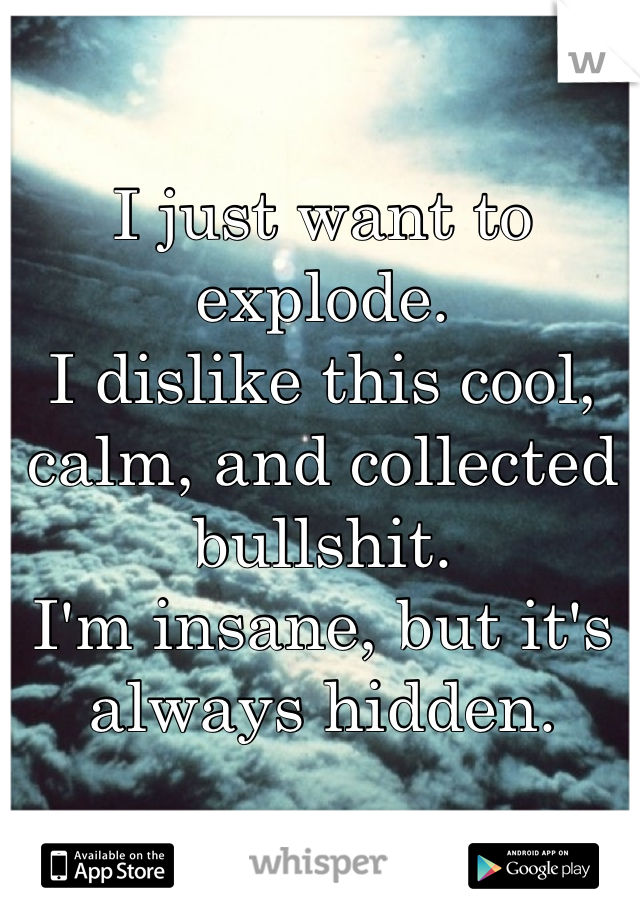 I just want to explode. I dislike this cool, calm, and collected bullshit. I'm insane, but it's always hidden.