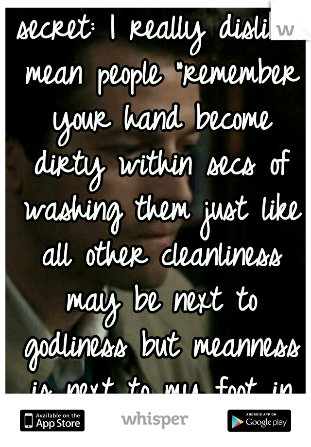 """secret: I really dislike mean people """"remember your hand become dirty within secs of washing them just like all other cleanliness may be next to godliness but meanness is next to my foot in your butt"""""""