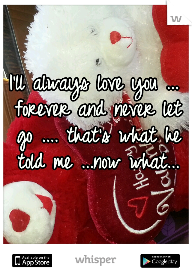 I'll always love you ... forever and never let go .... that's what he told me ...now what...