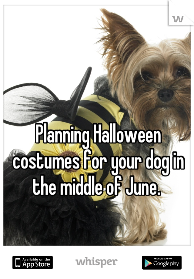 Planning Halloween costumes for your dog in the middle of June.