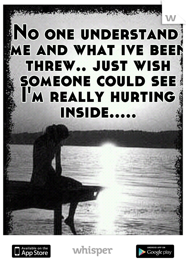 No one understand me and what ive been threw.. just wish someone could see I'm really hurting inside.....