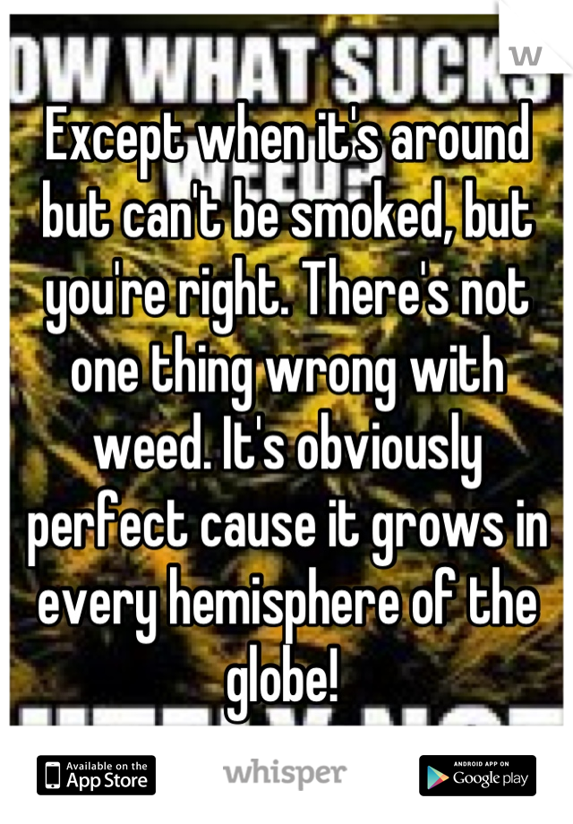 Except when it's around but can't be smoked, but you're right. There's not one thing wrong with weed. It's obviously perfect cause it grows in every hemisphere of the globe!