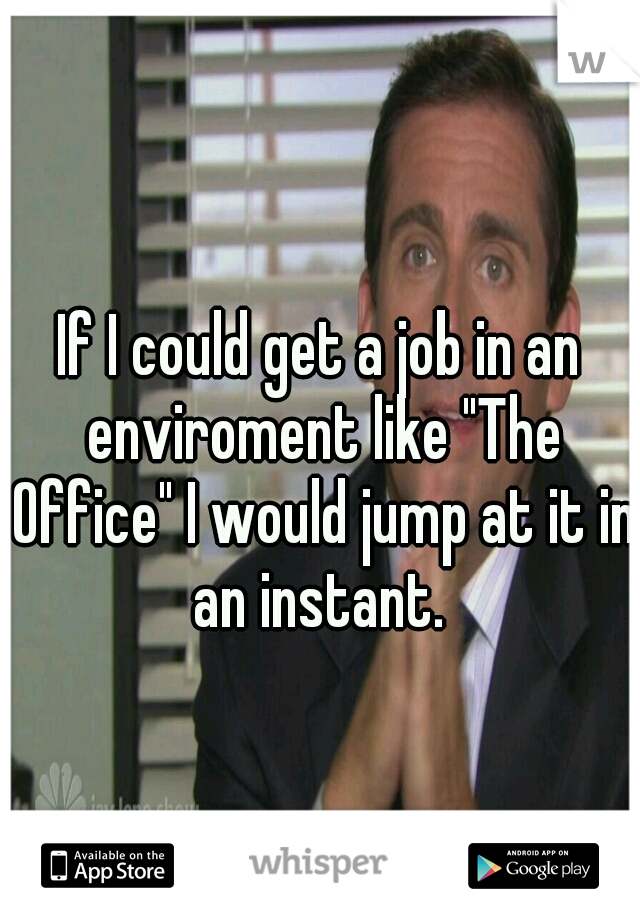 """If I could get a job in an enviroment like """"The Office"""" I would jump at it in an instant."""