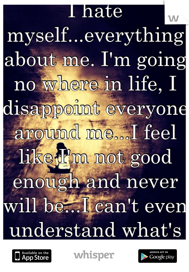 I hate myself...everything about me. I'm going no where in life, I disappoint everyone around me...I feel like I'm not good enough and never will be...I can't even understand what's wrong with me :'(