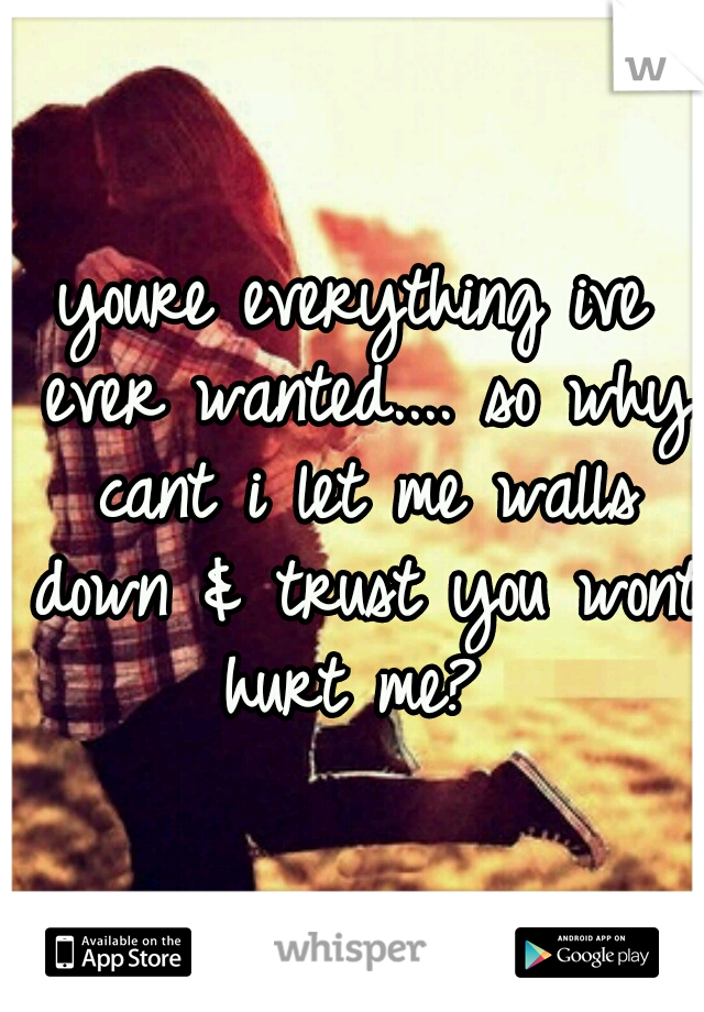 youre everything ive ever wanted.... so why cant i let me walls down & trust you wont hurt me?