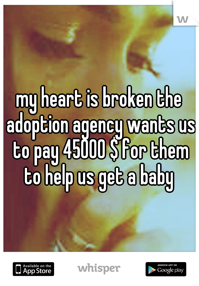 my heart is broken the adoption agency wants us to pay 45000 $ for them to help us get a baby