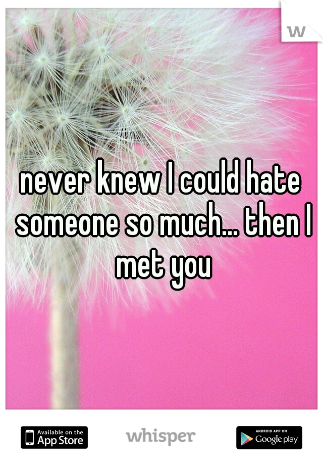 never knew I could hate someone so much... then I met you