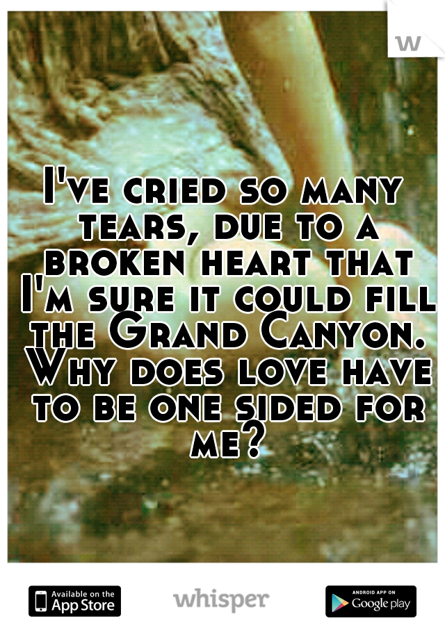 I've cried so many tears, due to a broken heart that I'm sure it could fill the Grand Canyon. Why does love have to be one sided for me?