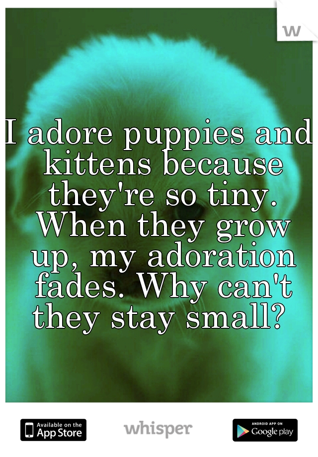 I adore puppies and kittens because they're so tiny. When they grow up, my adoration fades. Why can't they stay small?