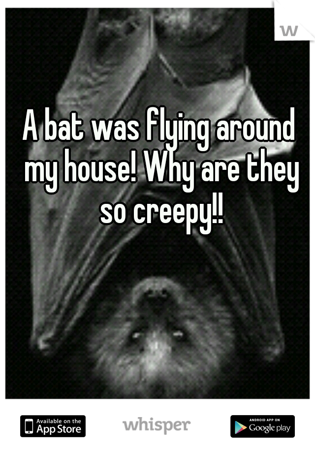 A bat was flying around my house! Why are they so creepy!!