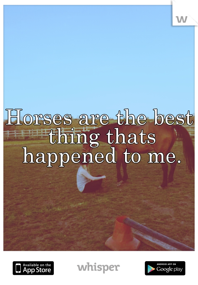 Horses are the best thing thats happened to me.