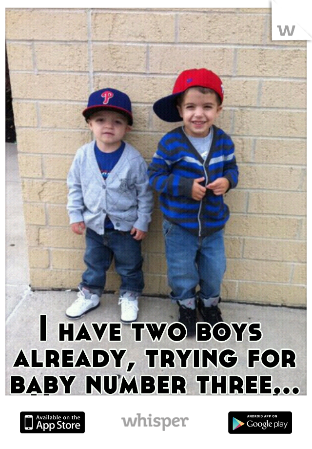 I have two boys already, trying for baby number three... Hopefully a girl!