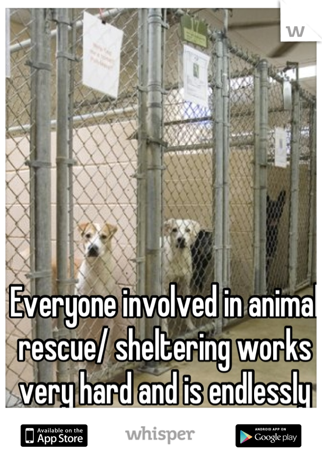 Everyone involved in animal rescue/ sheltering works very hard and is endlessly bad mouthed.