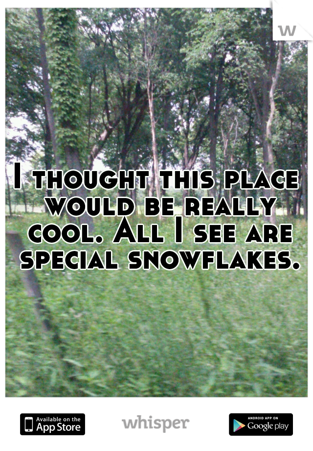 I thought this place would be really cool. All I see are special snowflakes.