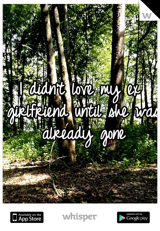 I didn't love my ex girlfriend until she was already gone