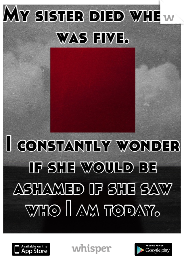My sister died when I was five.     I constantly wonder if she would be ashamed if she saw who I am today.