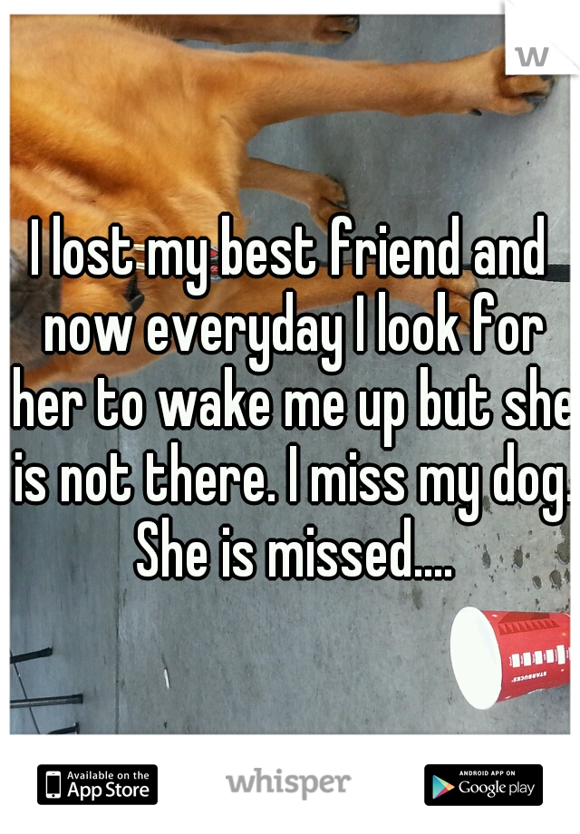 I lost my best friend and now everyday I look for her to wake me up but she is not there. I miss my dog. She is missed....