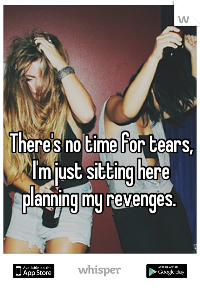 There's no time for tears, I'm just sitting here planning my revenges.