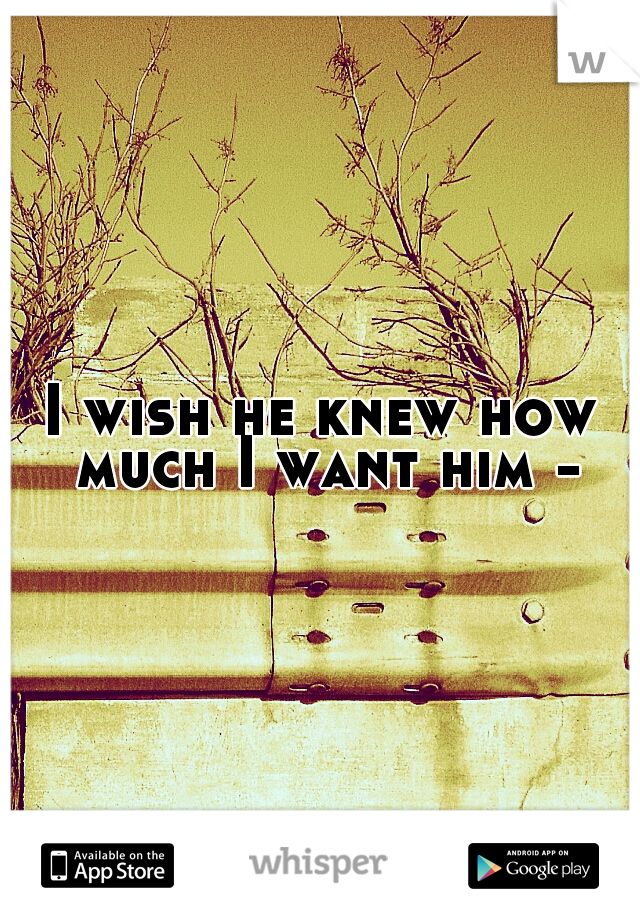 I wish he knew how much I want him -