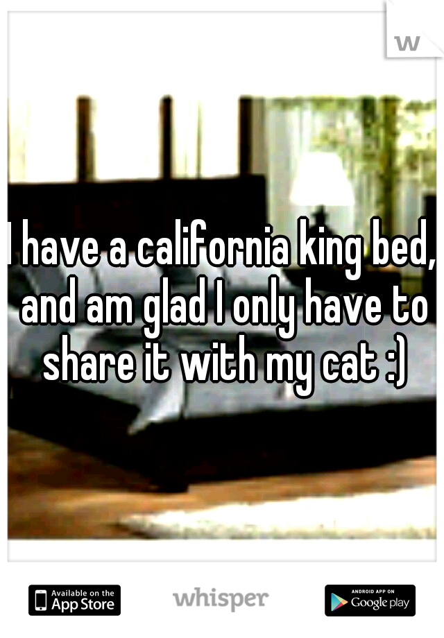 I have a california king bed, and am glad I only have to share it with my cat :)