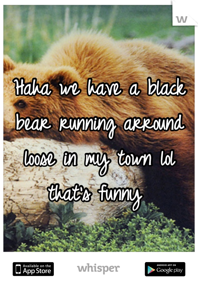 Haha we have a black bear running arround loose in my town lol that's funny