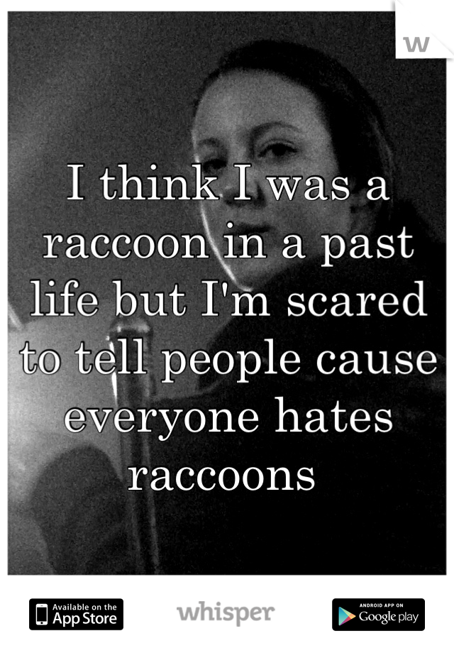 I think I was a raccoon in a past life but I'm scared to tell people cause everyone hates raccoons