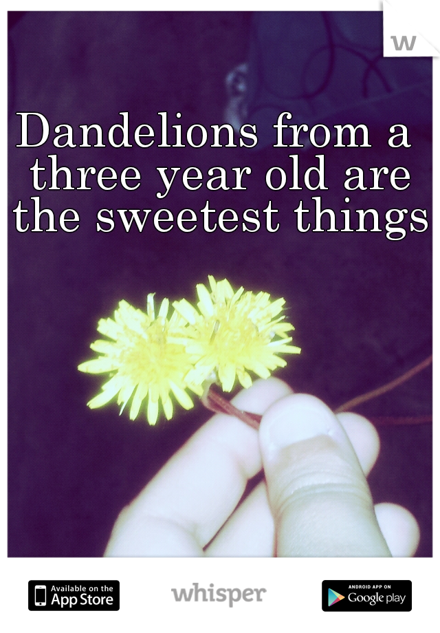 Dandelions from a three year old are the sweetest things.