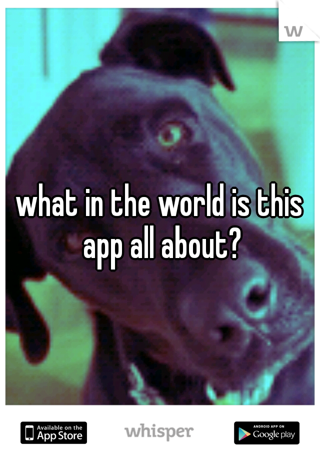 what in the world is this app all about?