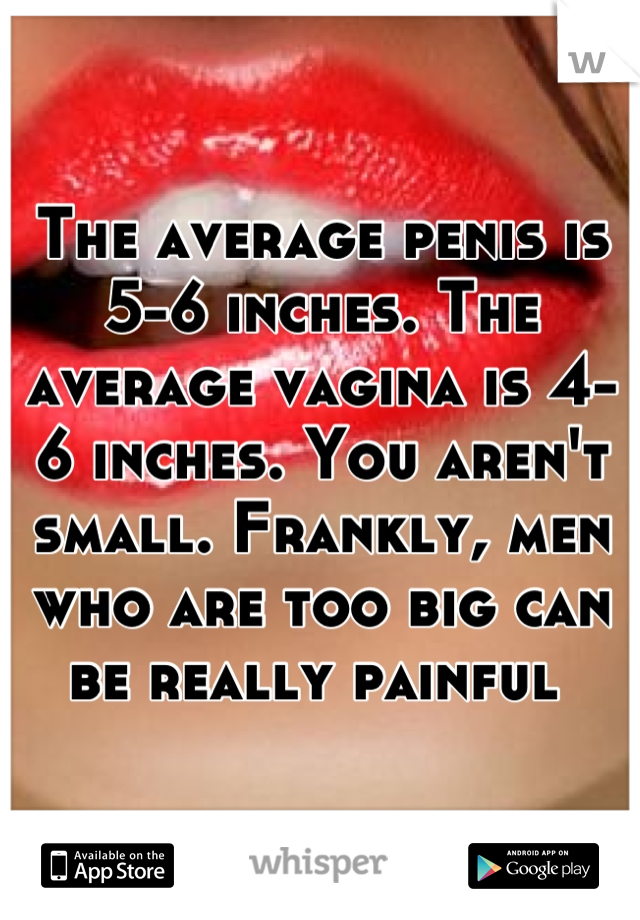 Is A 6 Penis Small
