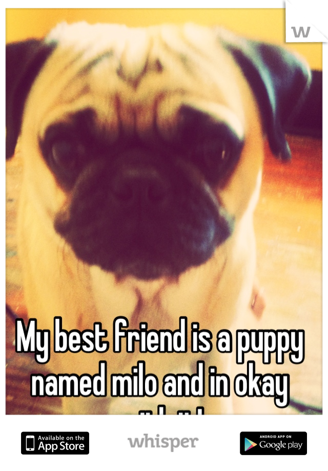 My best friend is a puppy named milo and in okay with it!