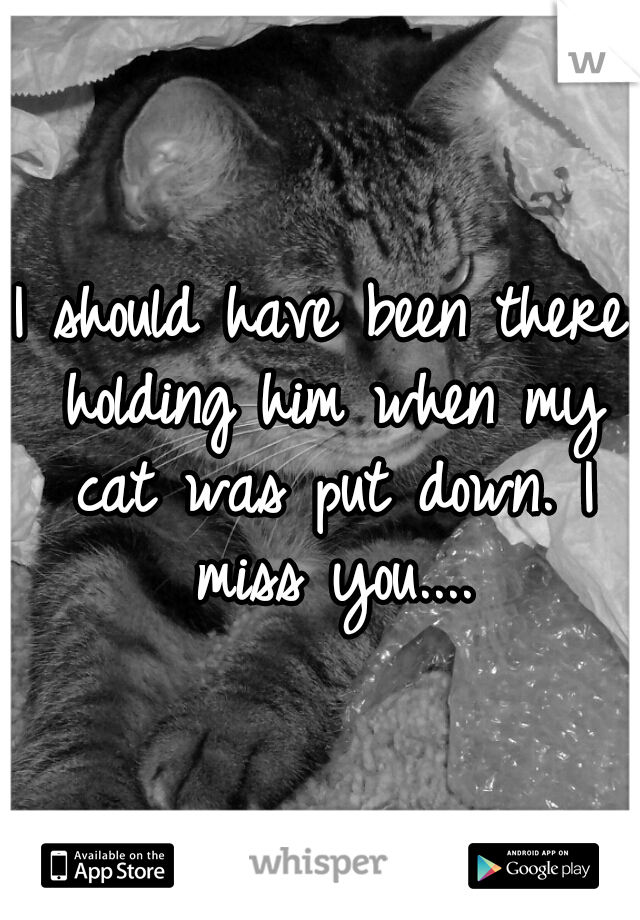 I should have been there holding him when my cat was put down. I miss you....