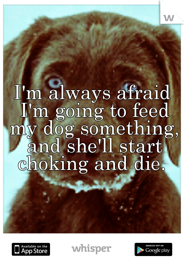 I'm always afraid I'm going to feed my dog something, and she'll start choking and die.