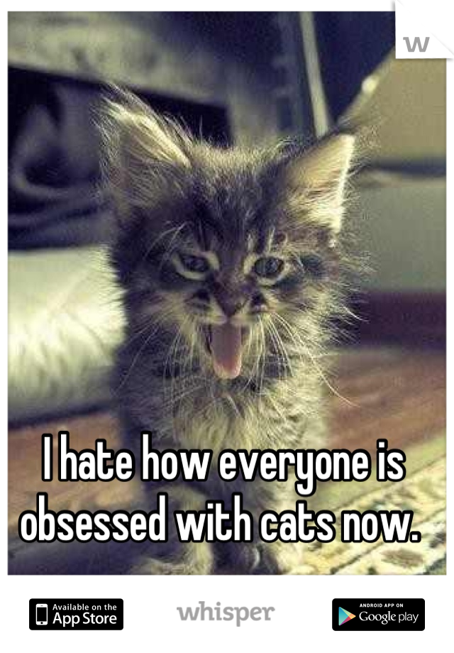 I hate how everyone is obsessed with cats now.