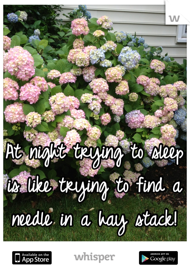 At night trying to sleep is like trying to find a needle in a hay stack!