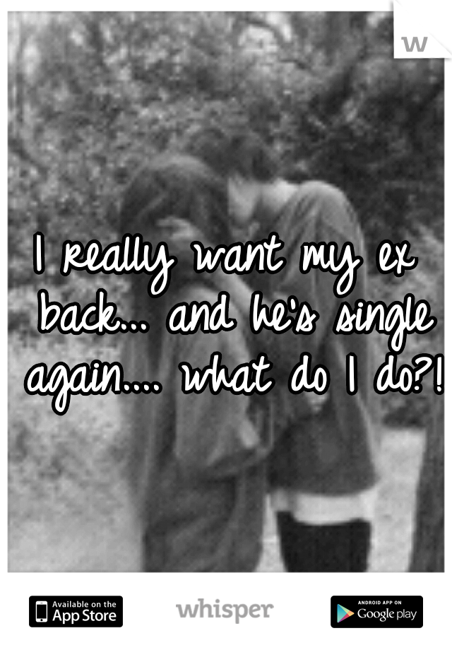 I really want my ex back... and he's single again.... what do I do?!