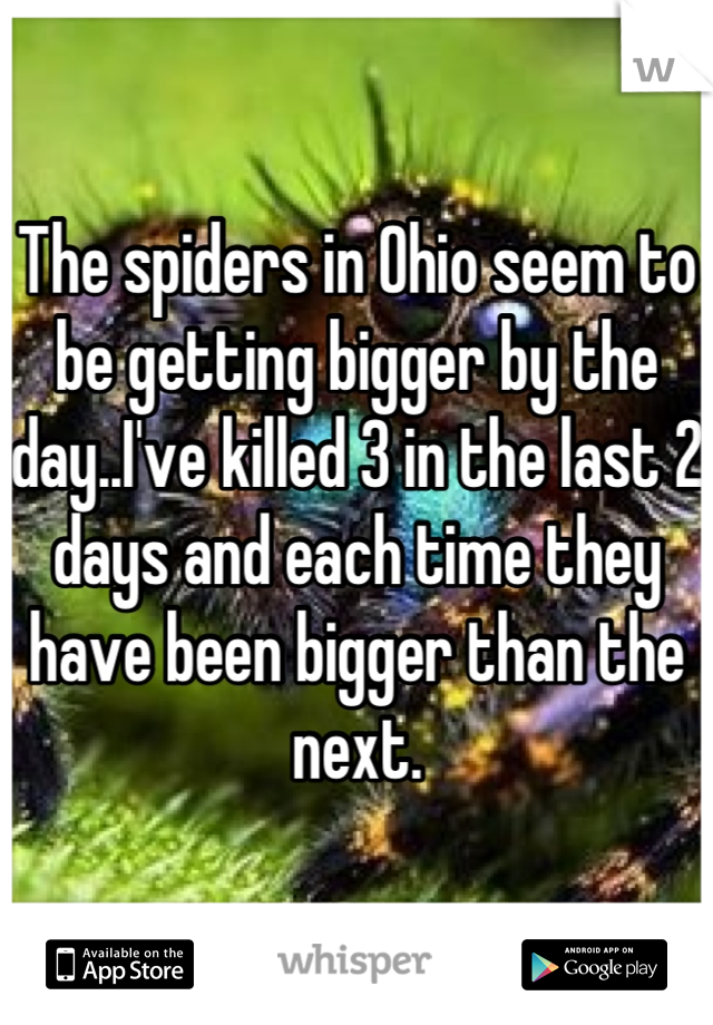 The spiders in Ohio seem to be getting bigger by the day..I've killed 3 in the last 2 days and each time they have been bigger than the next.