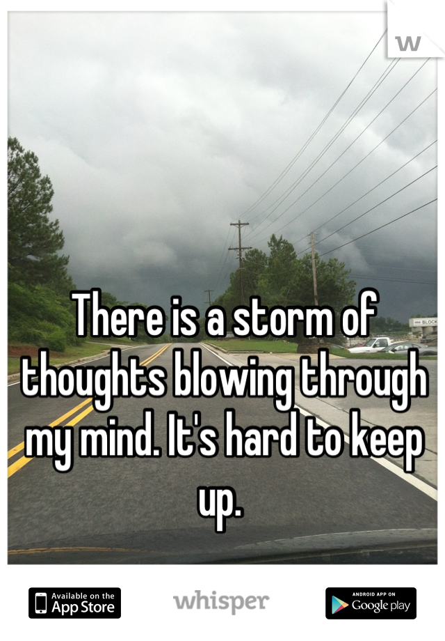 There is a storm of thoughts blowing through my mind. It's hard to keep up.