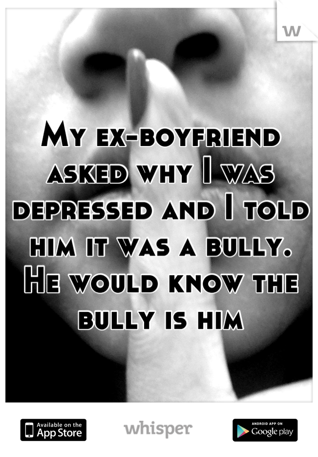 My ex-boyfriend asked why I was depressed and I told him it was a bully.  He would know the bully is him