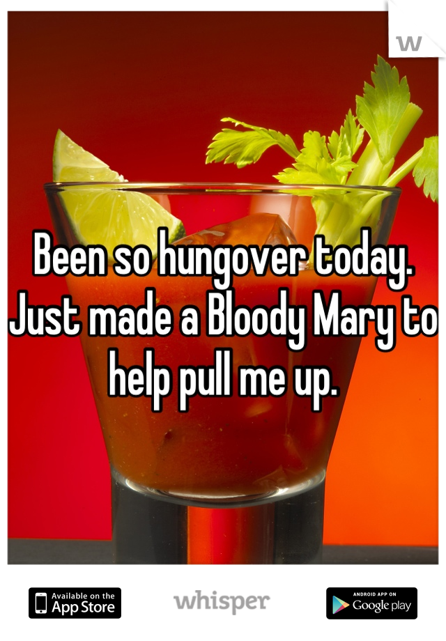 Been so hungover today. Just made a Bloody Mary to help pull me up.