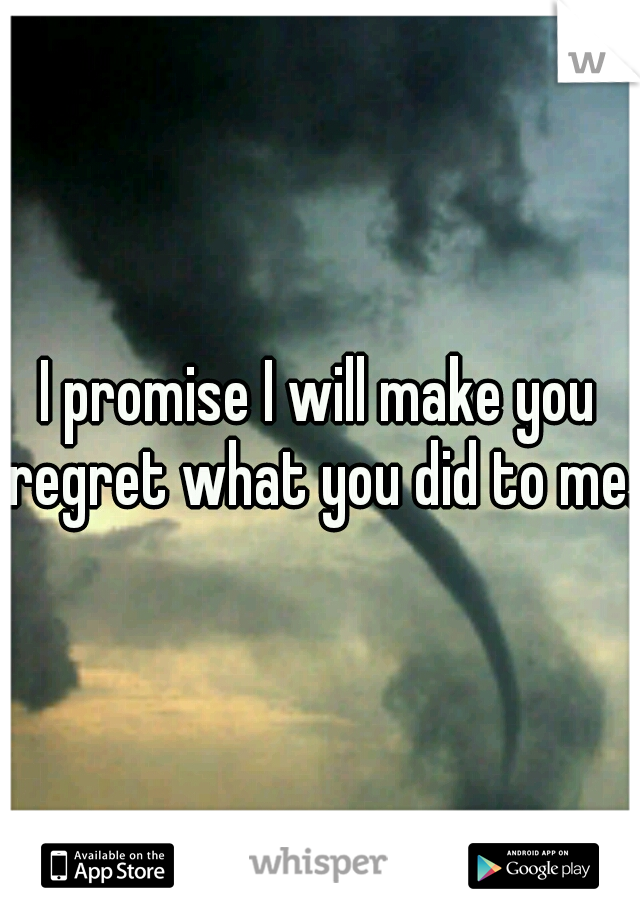 I promise I will make you regret what you did to me.