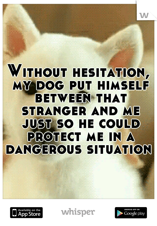 Without hesitation, my dog put himself between that stranger and me just so he could protect me in a dangerous situation