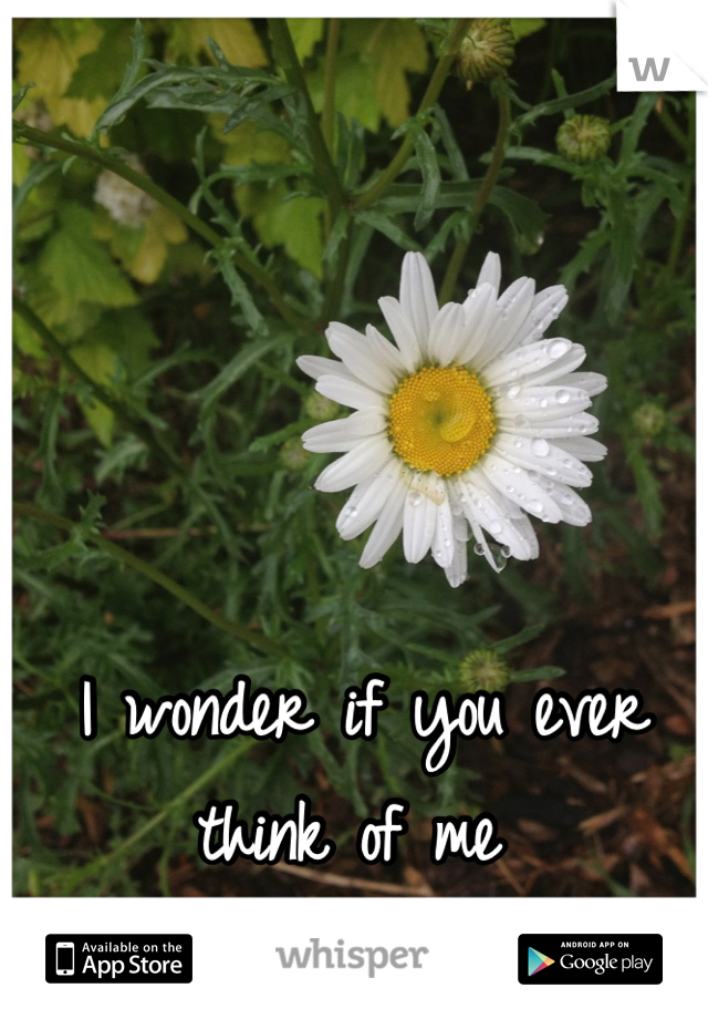 I wonder if you ever think of me