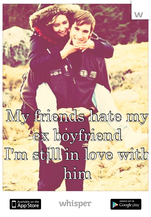 My friends hate my ex boyfriend  I'm still in love with him