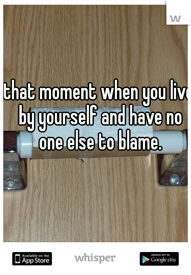 that moment when you live by yourself and have no one else to blame.