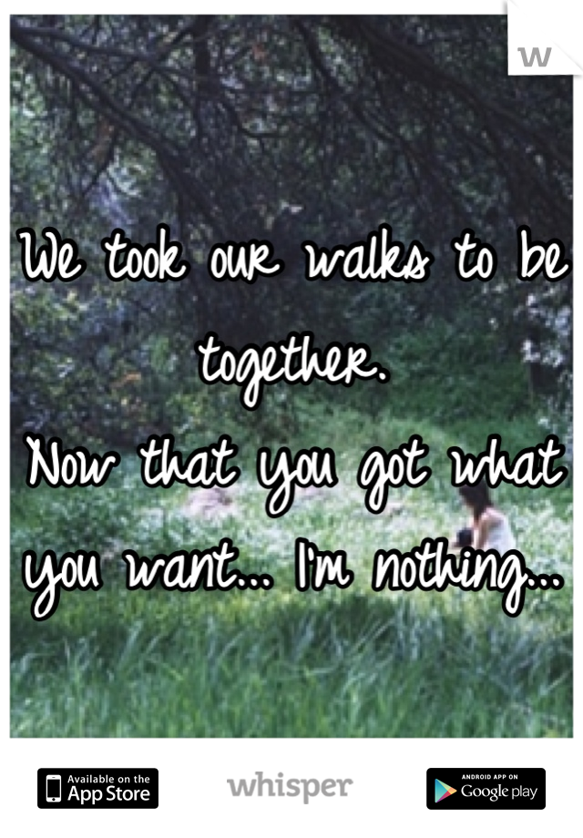 We took our walks to be together.  Now that you got what you want... I'm nothing...