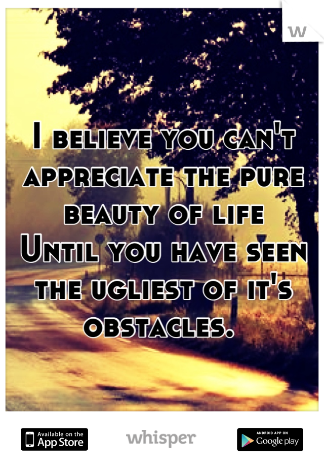 I believe you can't appreciate the pure beauty of life Until you have seen the ugliest of it's obstacles.