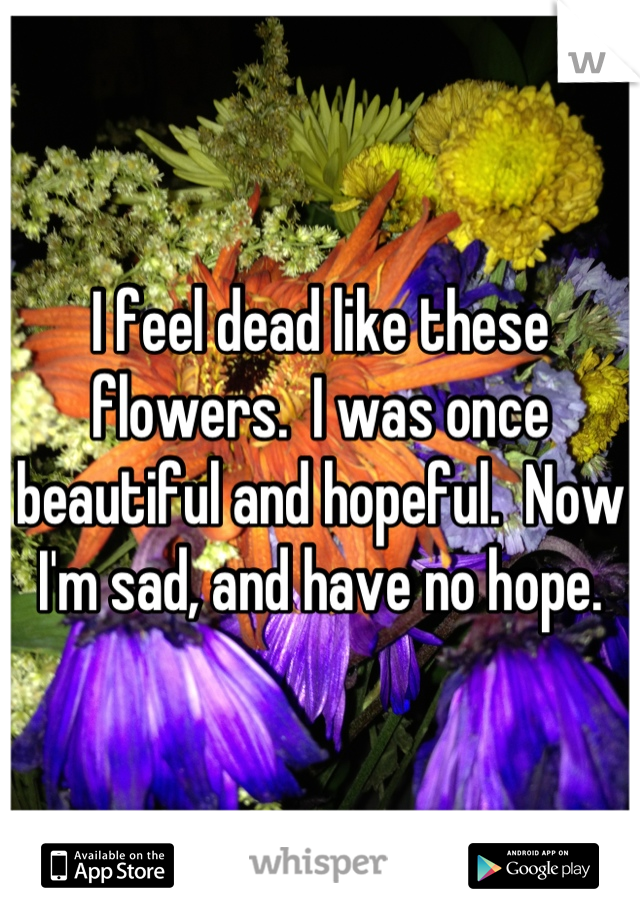 I feel dead like these flowers.  I was once beautiful and hopeful.  Now I'm sad, and have no hope.